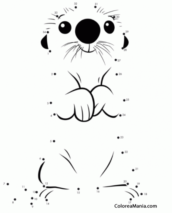 Colorear Otter, una nutria de Buscando a Dory (Cine y TV), dibujo ...