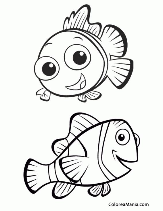Colorear Dory Y Nemo Buscando A Dory Dibujo Para Colorear Gratis