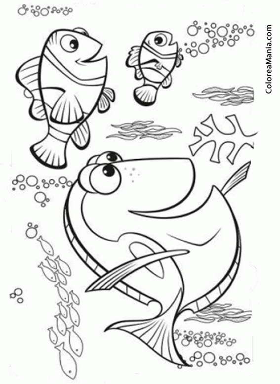 Colorear Marlin Nemo Y Dory Buscando A Dory Dibujo Para Colorear