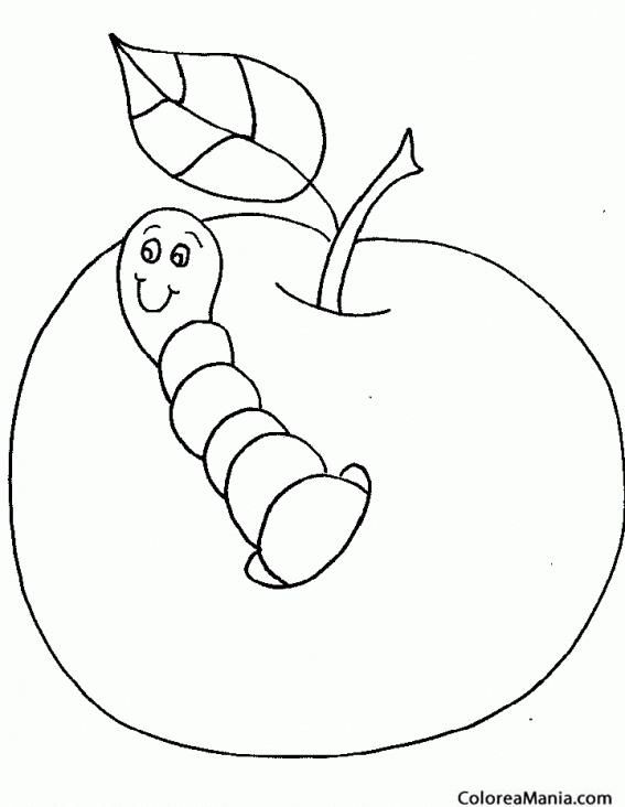 Colorear Gusano saliendo de manzana Insectos dibujo para