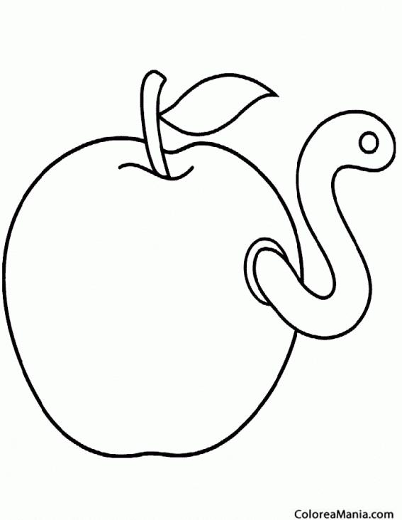 Colorear Gusano En Una Manzana 2 Insectos Dibujo Para Colorear Gratis