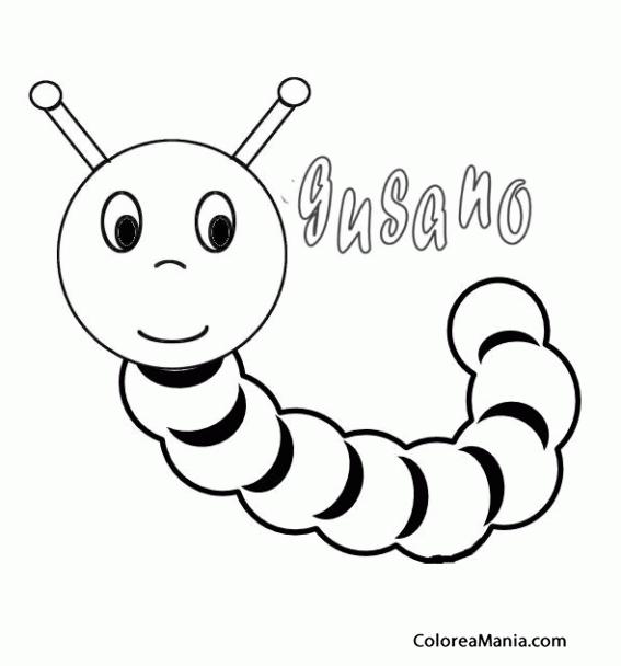 Colorear Gusano se escribe.. (Insectos), dibujo para ...
