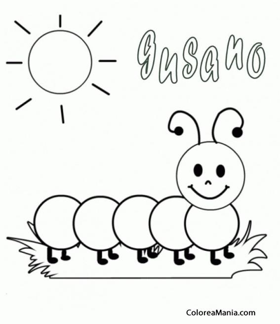 Colorear Gusano Bajo El Sol Insectos Dibujo Para Colorear Gratis