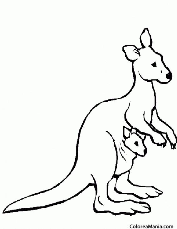 Colorear Canguro con su bebé (Animales de la Sabana), dibujo para ...