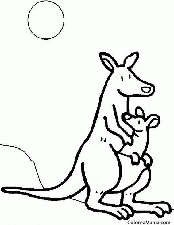 Colorear Canguro y cría 2 (Animales de la Sabana), dibujo para ...