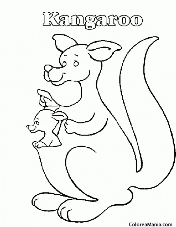 Colorear K de kangaroo. Canguro 2 (Animales de la Sabana), dibujo ...