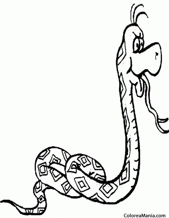 Colorear Serpiente Pitón Roca Africana Reptiles Dibujo