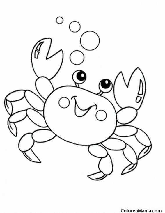 Colorear Cangrejo Burbujas Animales Marinos Dibujo Para