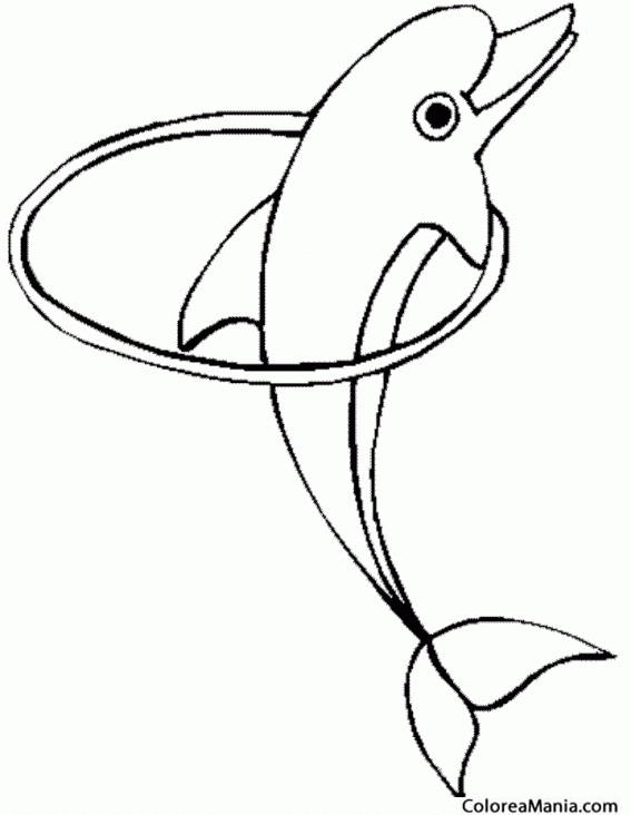 Colorear Delfn pasando por el aro Animales Marinos dibujo para