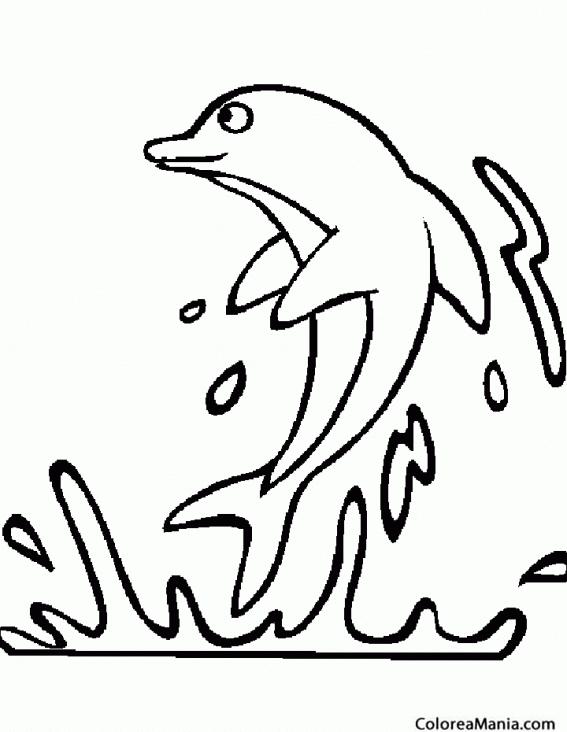 Colorear Delfín fuera del agua (Animales Marinos), dibujo ...