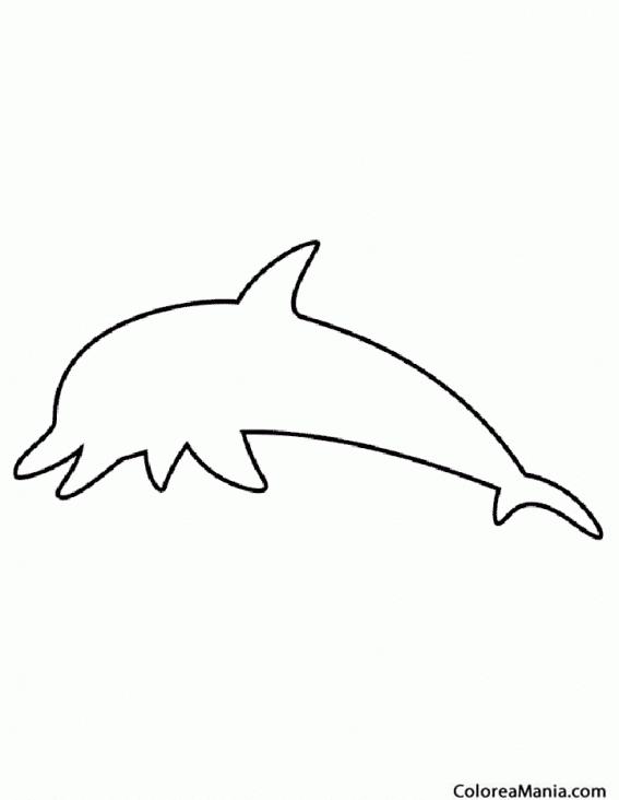 Colorear silueta de delfn animales marinos dibujo para - Siluetas para imprimir ...