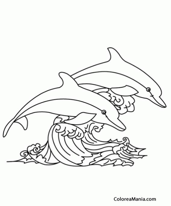 Colorear Delfines saltando ola Animales Marinos dibujo para