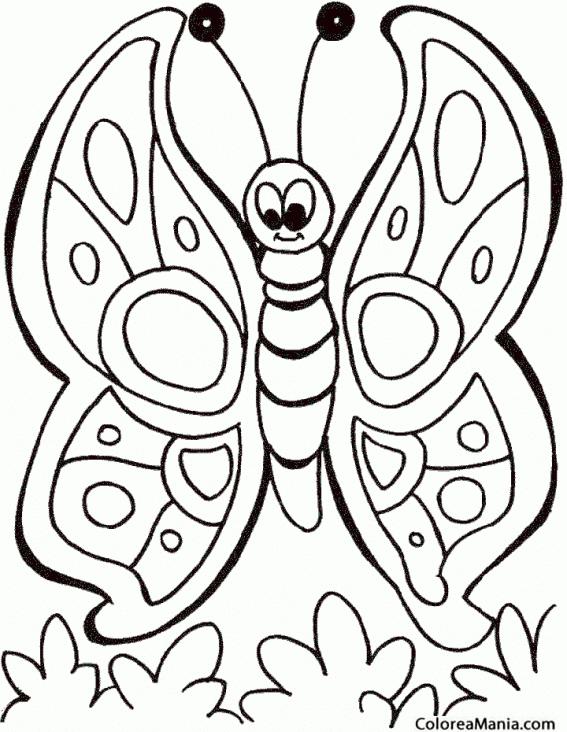 Colorear mariposa dibujo infantil insectos dibujo para - Plantillas de mariposas para pintar ...