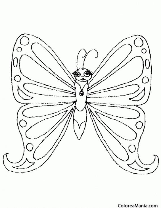 Colorear Mariposa Presumida Insectos Dibujo Para Colorear Gratis