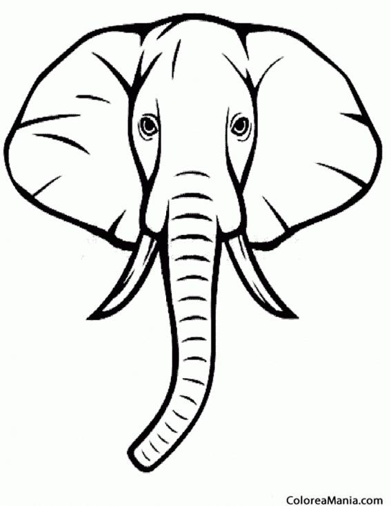 Colorear Cabeza de Elefante de frente Animales de la Sabana
