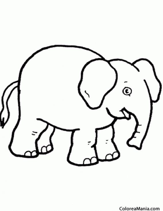 Colorear elefante dibujo infantil animales de la sabana - Dibujos en la pared infantiles ...