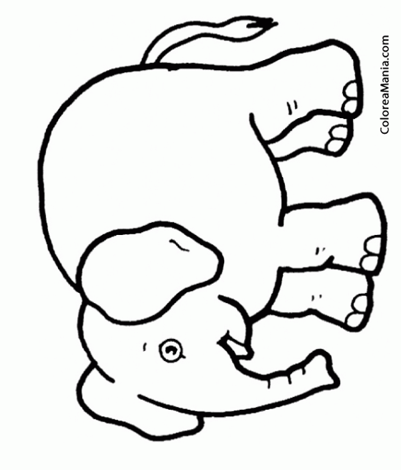 Colorear Elefante con boca abierta Animales de la Sabana dibujo