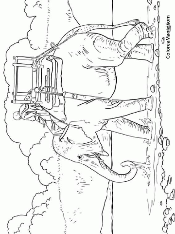 Colorear Elefante indio para viajar (Animales de la Sabana), dibujo ...