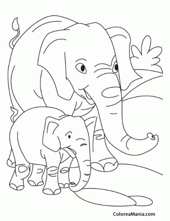 Colorear Elefante Adulto Y Cria Animales De La Sabana Dibujo