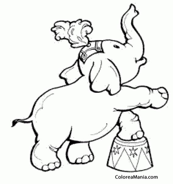 Colorear Elefante circo levanta pata (Animales de la Sabana), dibujo ...