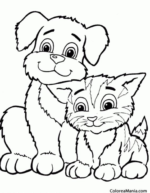 Colorear Perro y gato amigos Animales Domsticos dibujo para
