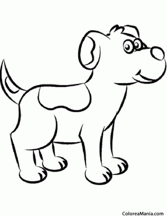Animales Domesticos Dibujos Para Colorear. Elegant Perro ...