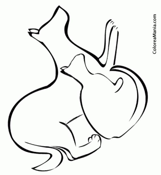 Colorear Silueta de Perro y Gato Animales Domsticos dibujo