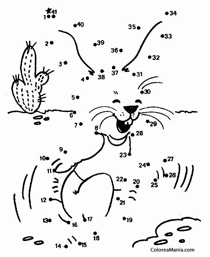 Colorear Conejito y cactus (41) (Animales), dibujo para colorear gratis