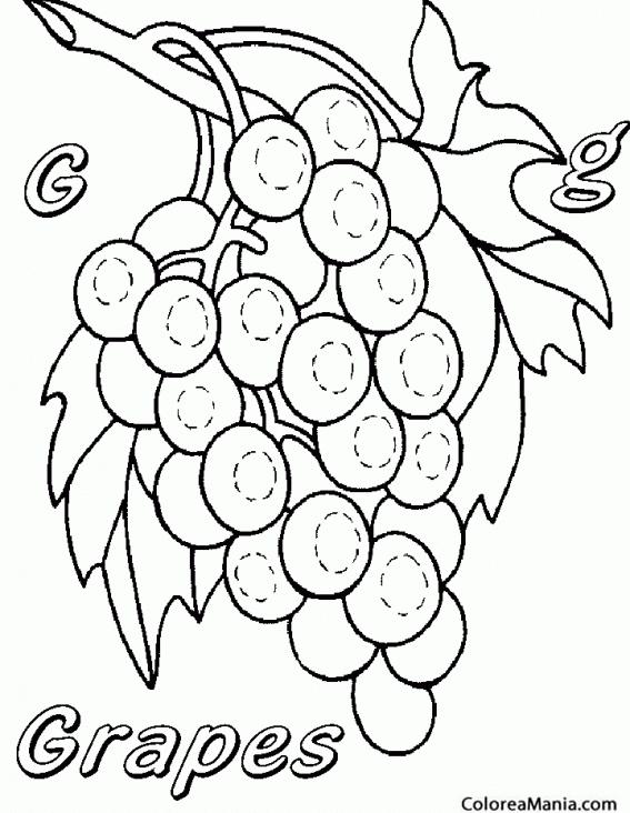 Colorear Racimo Uva Dulce Frutas Dibujo Para Colorear Gratis