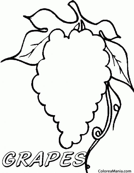 Colorear Silueta de racimo Uva Frutas dibujo para colorear gratis