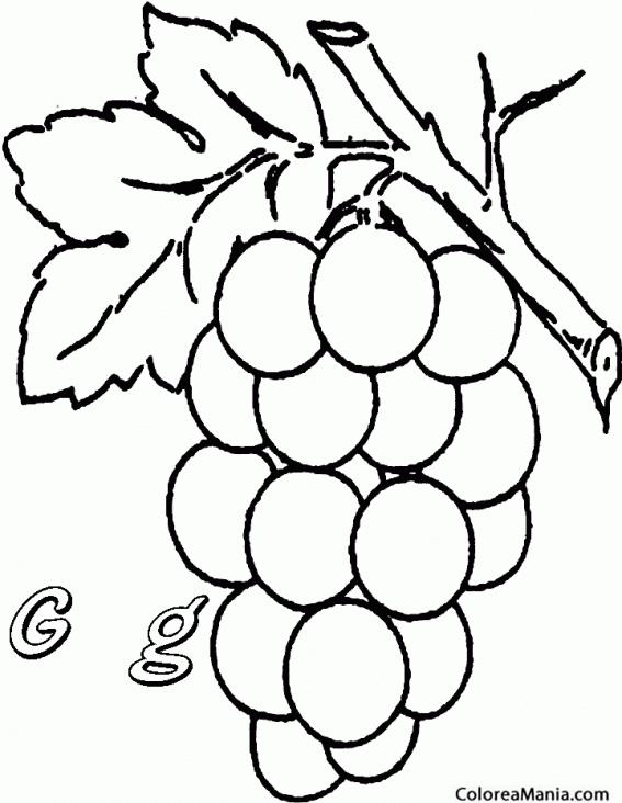 Colorear Uvas Grapes Frutas Dibujo Para Colorear Gratis