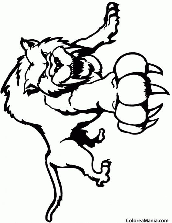 Tigre Dientes De Sable on Dibujos De Navidad Para Colorear