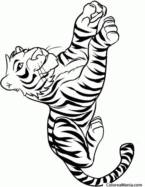 Colorear Tigre Sonriendo Animales De La Selva Dibujo Para