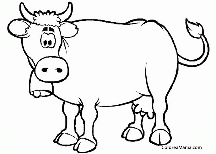 Colorear Vaca Con Campana Animales De Granja Dibujo Para