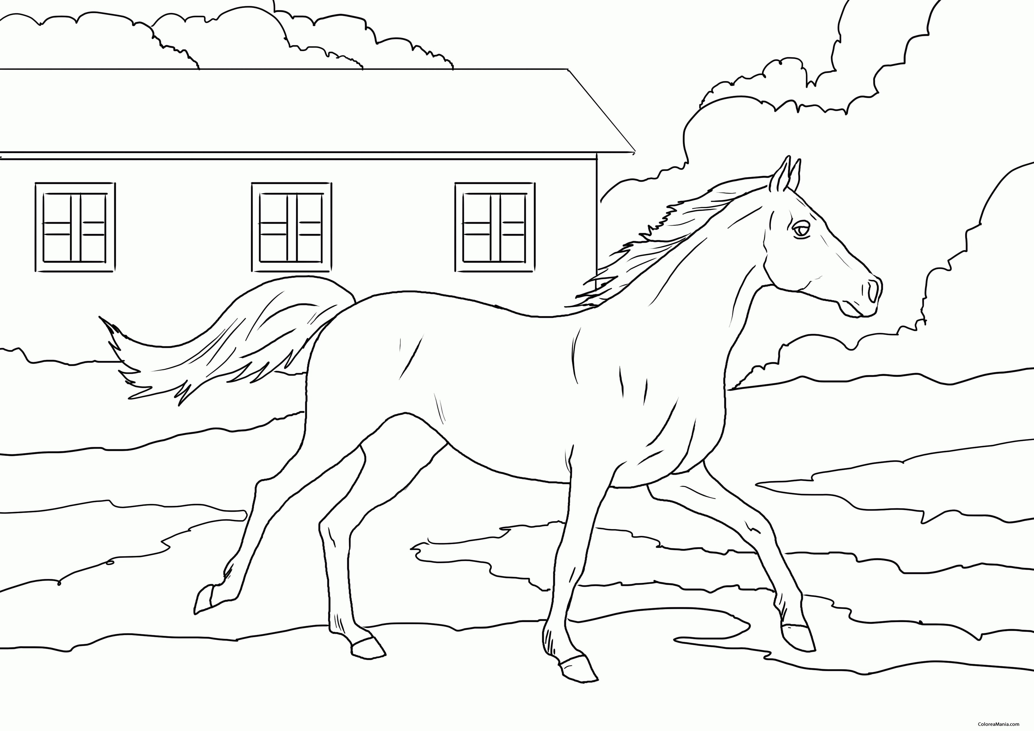 Colorear Caballo corriendo con paisaje (Animales de Granja), dibujo ...