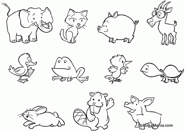 Dibujos De Animales Adorables Para Colorear: Colorear Animales Varios (Animales De Granja), Dibujo Para