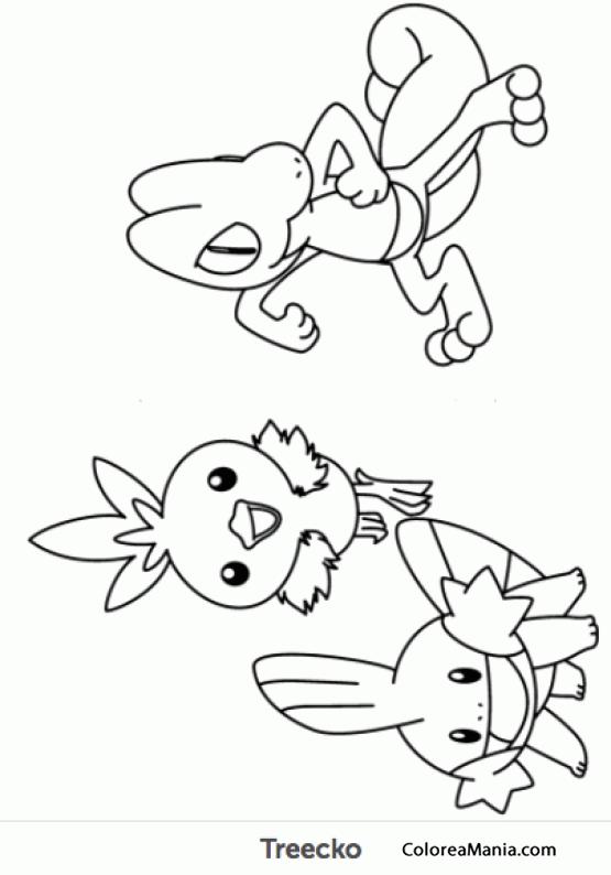 Colorear Treecko (Pokemon), dibujo para colorear gratis