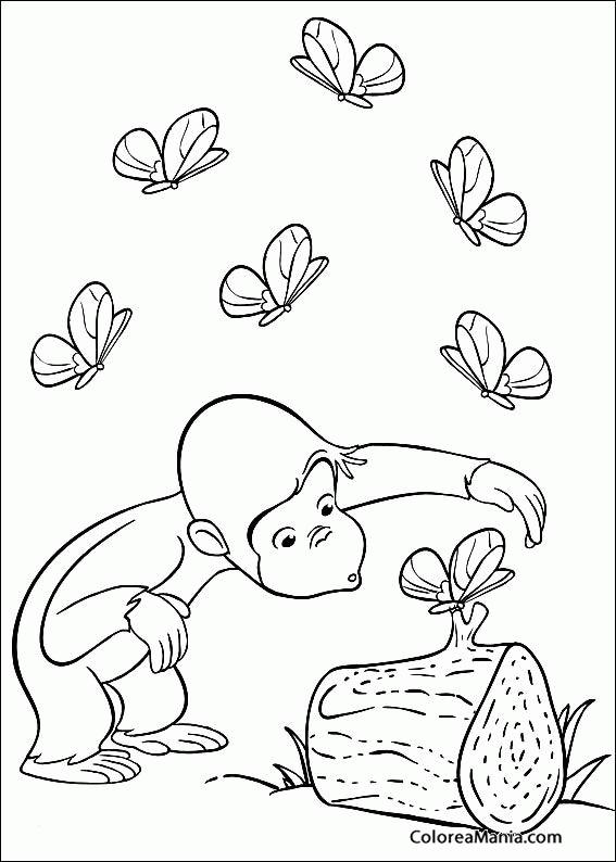 Colorear Chimpancé rodeado de mariposas (Animales de la Selva ...