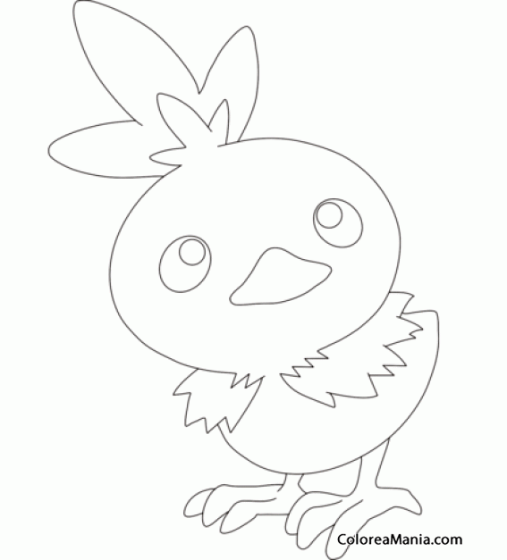 Colorear Torchic. Generation III Pokemon (Pokemon), Dibujo