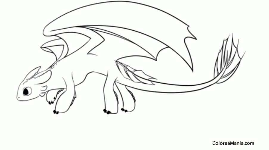 Colorear Dragones Para Dragones Para Colorear: Dibujos Para Colorear De Como Entrenar A Tu Dragon