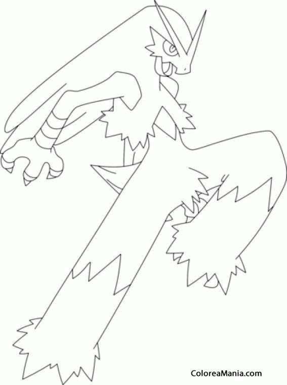 Colorear Blaziken. Generation III Pokemon (Pokemon ...