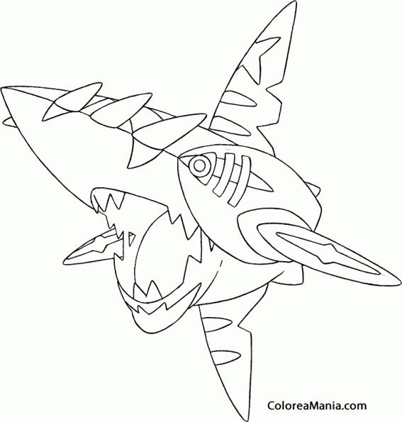 Pokemon Arceus Ex Card - Wiring Diagram And Engine Diagram