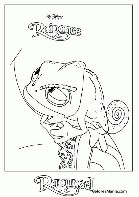 Colorear Pascal 2 (Enredados - Rapunzel), dibujo para colorear gratis