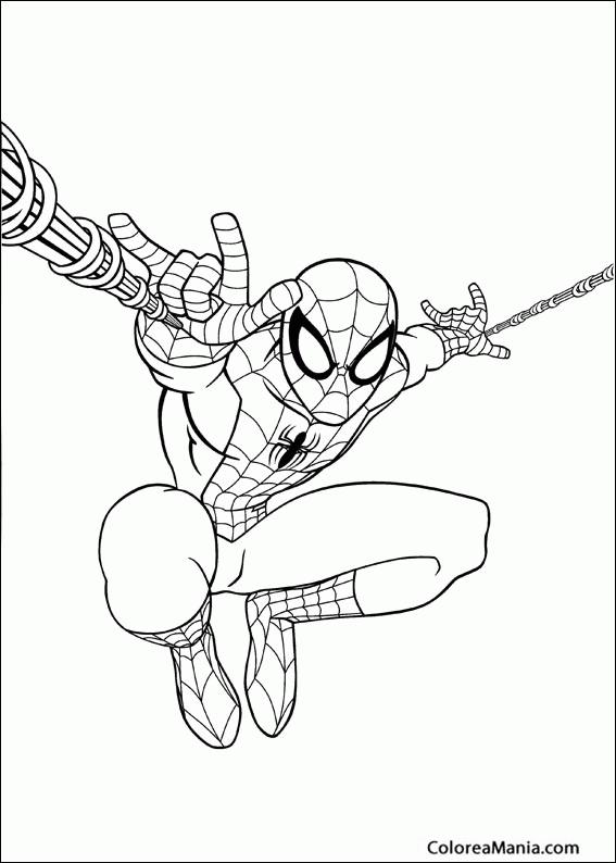 Colorear Spiderman Lanza Telarañas Spiderman Dibujo Para