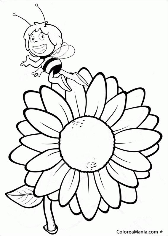 Colorear Maya ante un girasol La abeja Maya dibujo para