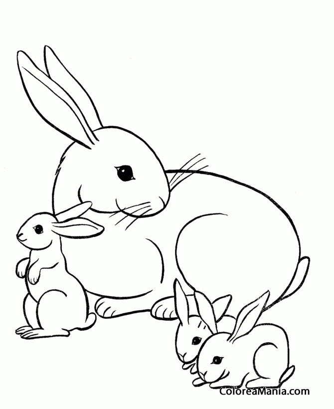 Colorear Conejo mamá con sus bebés (Animales de Granja), dibujo para ...