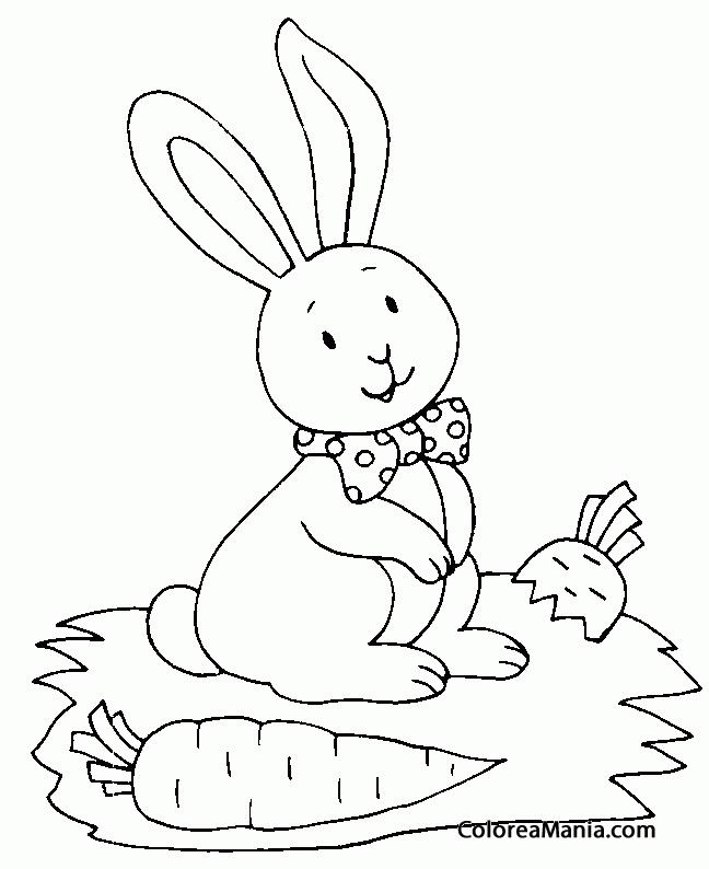 Colorear Conejo Con Lazo Y Zanahoria Animales De Granja Dibujo Para Colorear Gratis Juegos para educar en valores. colorear conejo con lazo y zanahoria