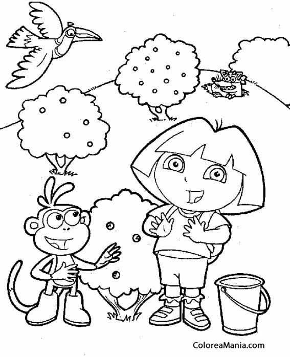 Colorear Dora en el campo (Dora la exploradora), dibujo para ...