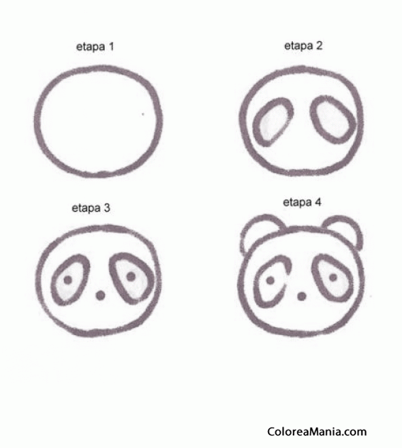 Colorear Cabeza De Oso Panda Aprendiendo A Dibujar Dibujo Para
