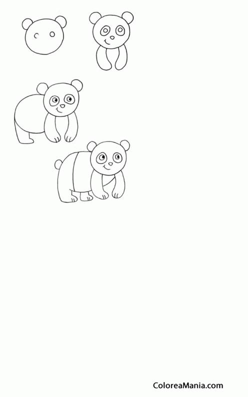 Colorear Un Oso Panda Aprendiendo A Dibujar Dibujo Para